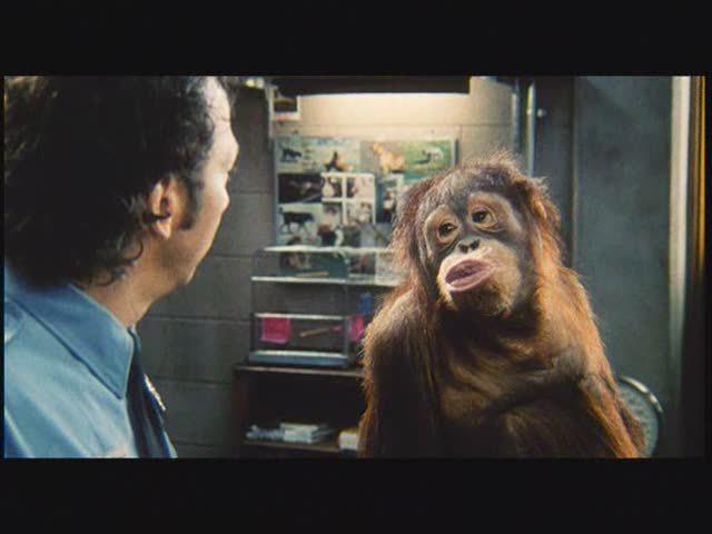 Animal - Das Tier im Manne Video 3