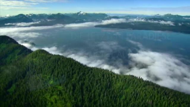 Die letzten Paradiese - Die Ökosysteme der Erde Video 2